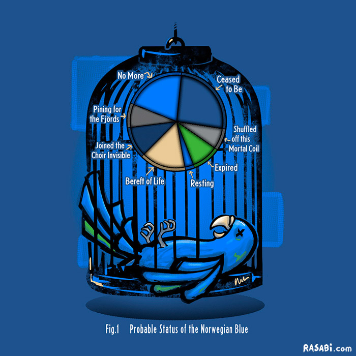 t-shirt a dead parrot by any other name monty python